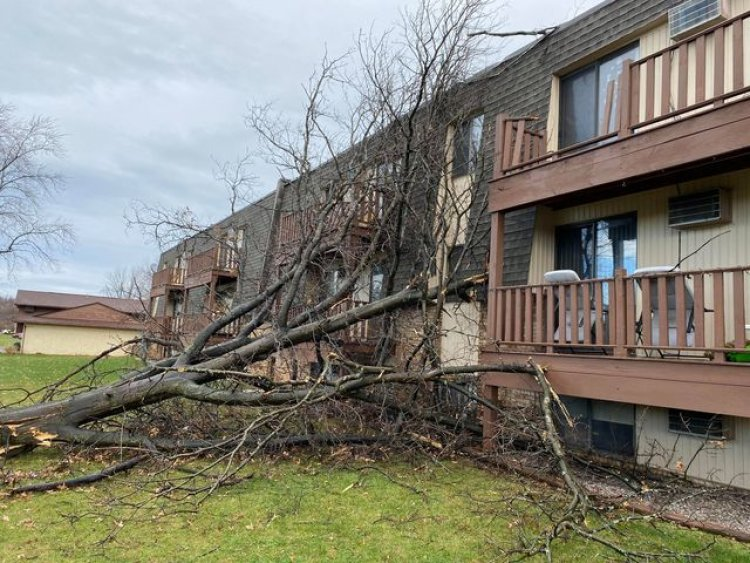 Photo gallery: Strong storms sweep across Northeast Ohio, damage reported